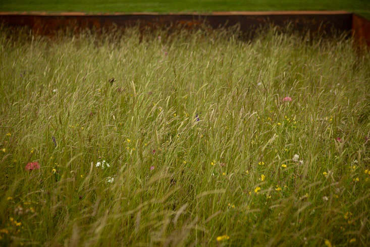 capability-brown-gardens-hampton-court-gardenista