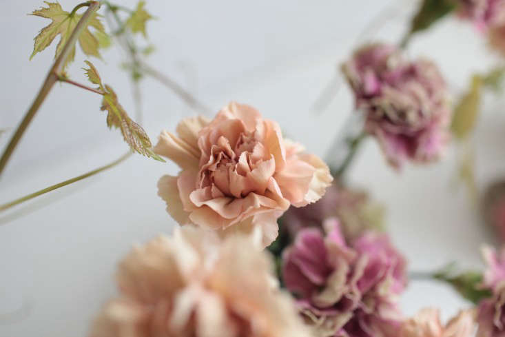detail-peach-antique-carnation-sylvia-moreno-bunge-gardenista