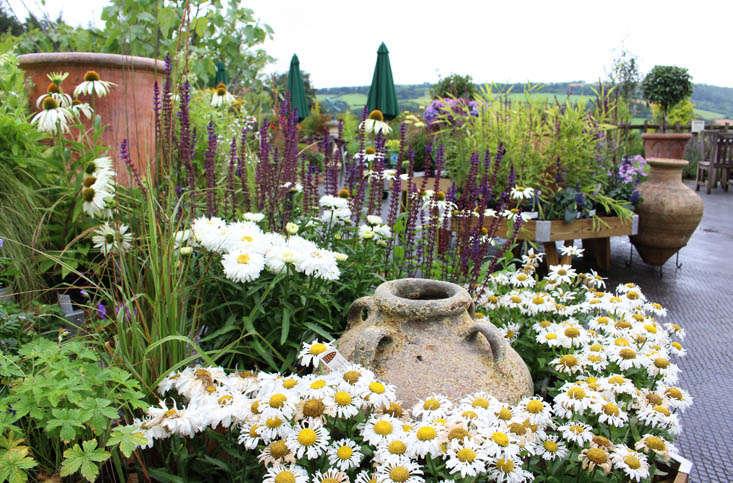 duchy-nursery-exterior-3-gardenista