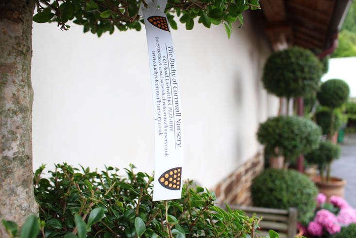 duchy-nursery-label-gardenista