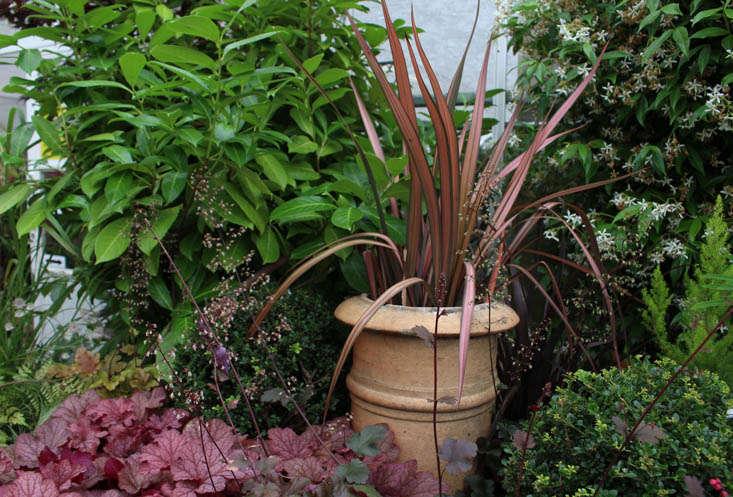 duchy-nursery-pots-2-gardenista