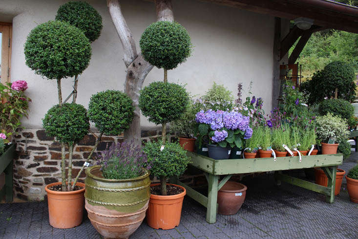 duchy-nursery-pots-exterior-gardenista