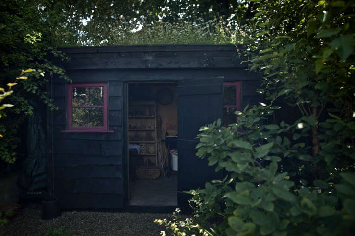 &#8\2\20;The garden has seating in the sun and shade,&#8\2\2\1; says Catriona. &#8\2\20;It&#8\2\17;s varied and adaptable; all of it is well used.&#8\2\2\1; The shed is a quiet hideaway, a pleasant way of staying outdoors even while it&#8\2\17;s raining.