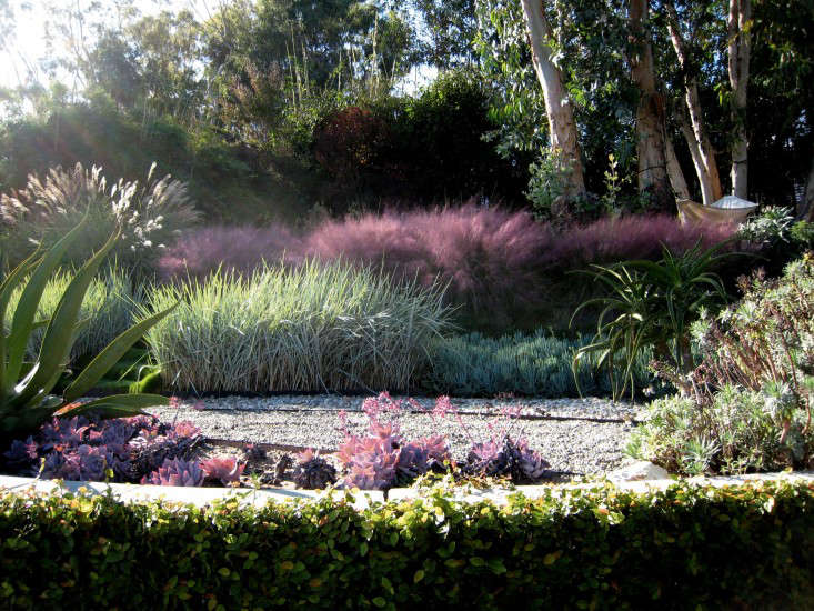 Photograph courtesy of Griffin Enright Architects. For more of this garden, see Architect Visit: A Hazy Landscape of Grasses in Santa Monica.