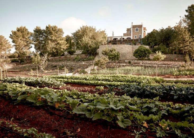 hotel-la-granja-ibiza-kitchen-garden-1-gardenista