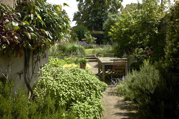 Catriona&#8\2\17;s garden is a parallelogram on a steep hill, sloping from left to right and down away from the house. The previous owners were clearly stumped by the topography. &#8\2\20;It was neglected and uninspired,&#8\2\2\1; says Catriona.