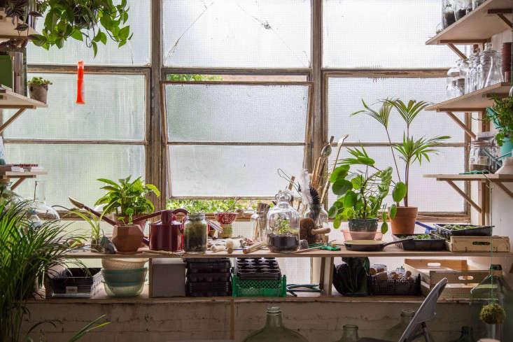 london-terrariums-gardenista-55