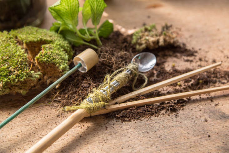 london_terrariums_materials_supplies_moss_gardenista_183