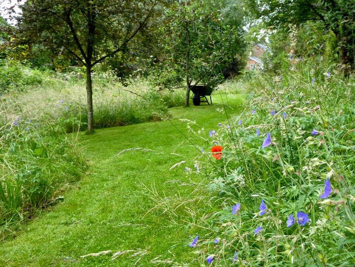 mown-path-meadow-garden-wheelbarrow-sally-french-gardenista