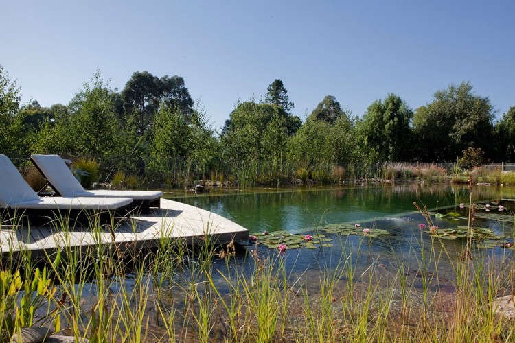A natural pool at Plane Trees Lodge in Australia has a water depth of 6 \1/\2 feet.Photograph courtesy of Biotop.