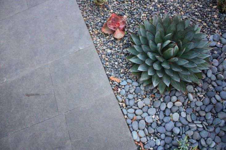 outdoor-kitchen-brennan-cox-succulents