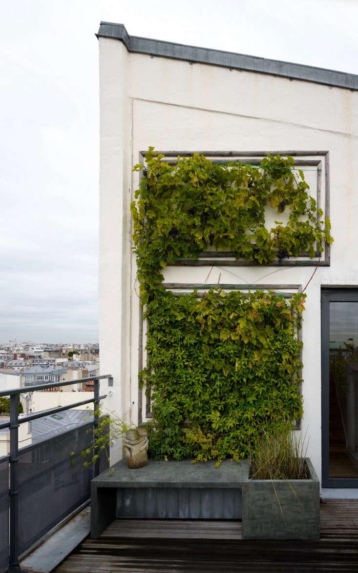 paris-roof-garden-marion-brenner-gardenista-dominique1309-122