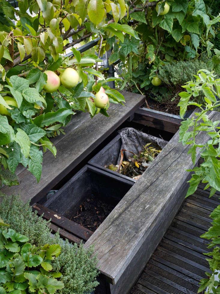paris-roof-garden-marion-brenner-gardenista-dominique1309-204