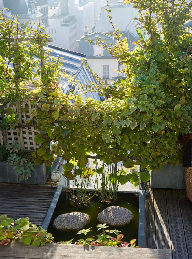 Photograph by Marion Brenner. Visible beyond the trellises and railings are two solar panels that provide energy to operatea fountainpump andoutdoor lighting on a Paris rooftop. For more of this garden, see Secret Paris: A Tiny Roof Garden with an Eiffel Tower View.