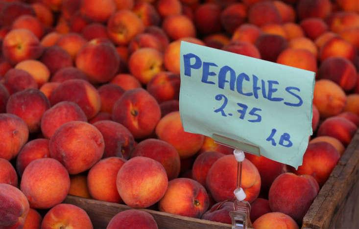 peaches1_marieviljoen_gardenista