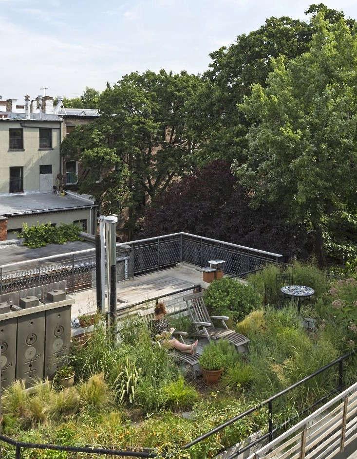 roof-garden-fort-greene-brooklyn-alive-structures-1-gardenista_0