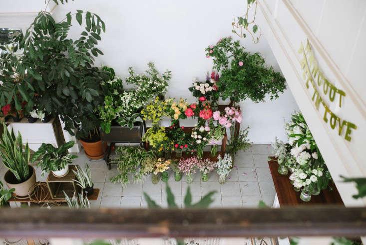 solabee_florist_gardenista