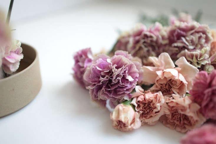 varieties-antique-carnations-sophia-moreno-bunge-gardenista