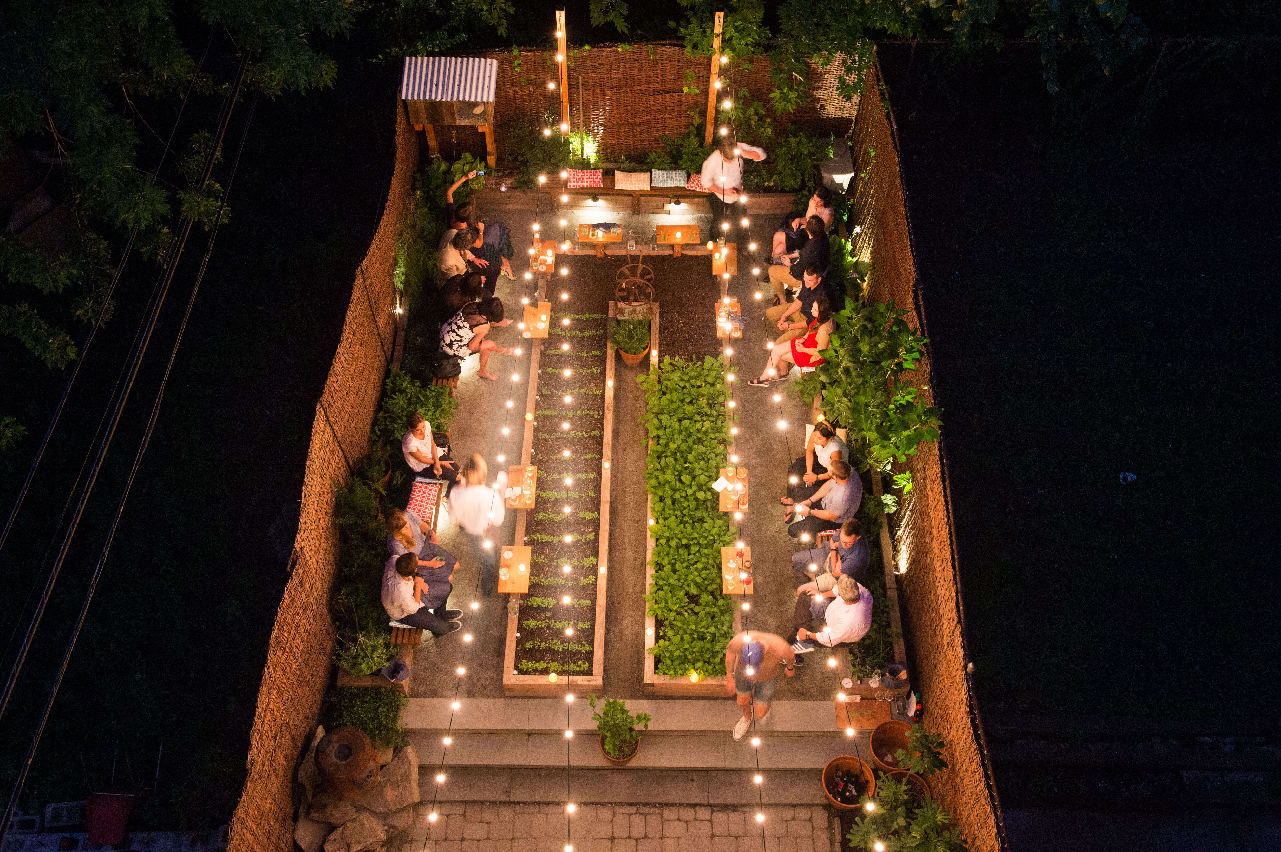 Olmsted Night Overhead of Garden by Evan Sung