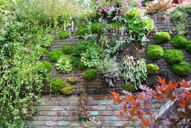 Artisans Landscape_Elliot Goliger_Gardenista_Current_Obsessions