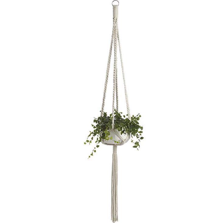 CB2 macramé-plant-holder-Gardenista