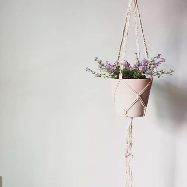 Fox & Sail_macram plant hanger_gardenista