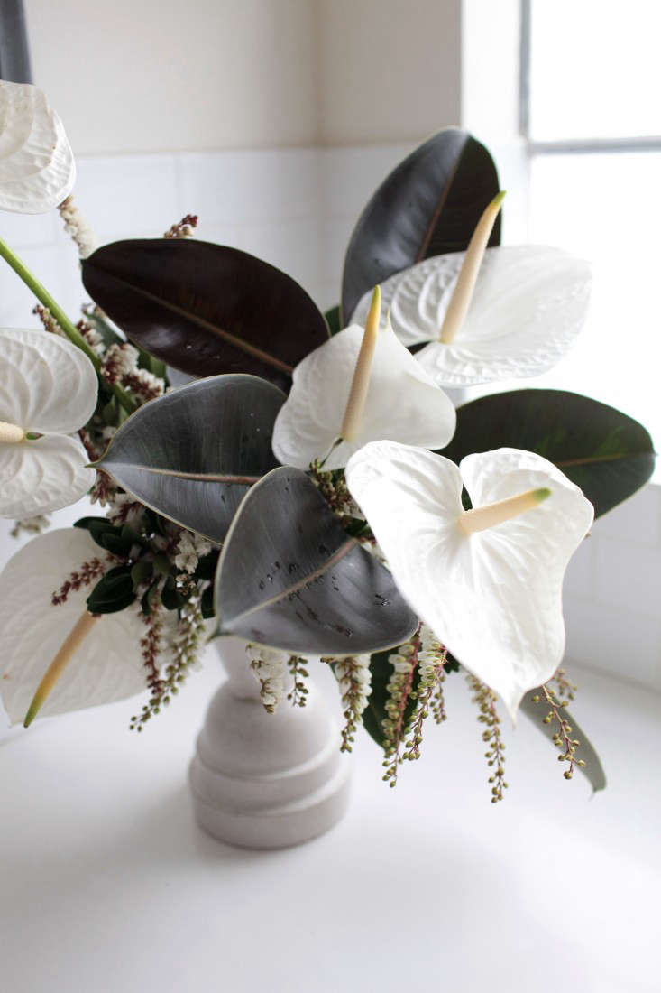 Sophia undercuts the formal structure of the anthuriums in her arrangement by adding delicate branches of pieris (also known as the Lily of the Valley shrub).