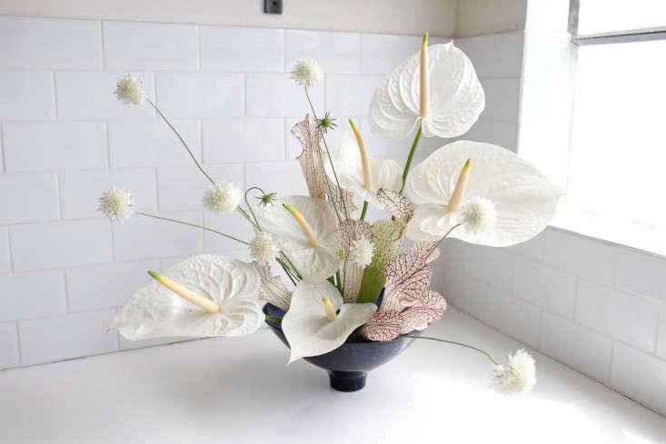 Sophia arranged white anthurium, powder-puff scabiosa, and pink-veined pitcher plants (Sarracenia) in a Vase by Natalie Weinberger.