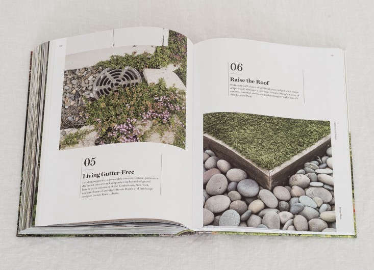 Do your homework before you commit to a design. Peruse all the gardening resources you can, including our book: Gardenista: The Definitive Guide to Stylish Outdoor Spaces.