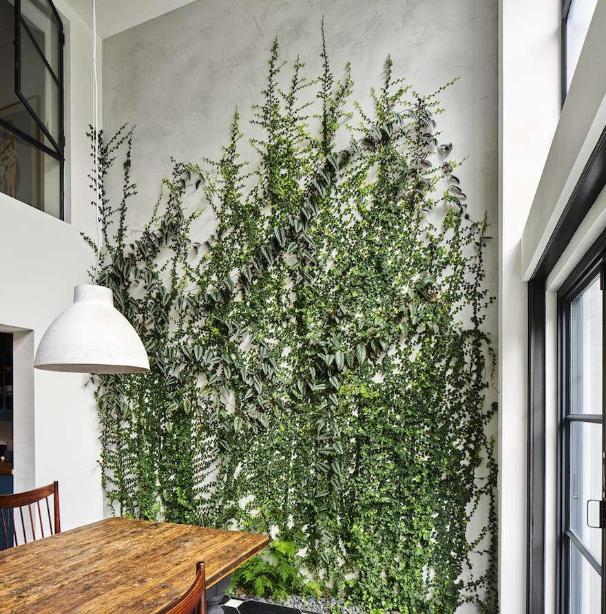 Green Wall Garden in Brooklyn by Kim Hoyt | Gardenista