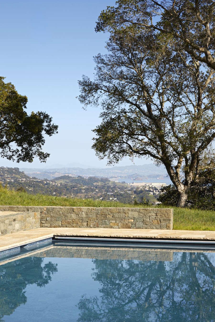 Marin-Hills-Pool-Scott-Lewis-Gardenista-10
