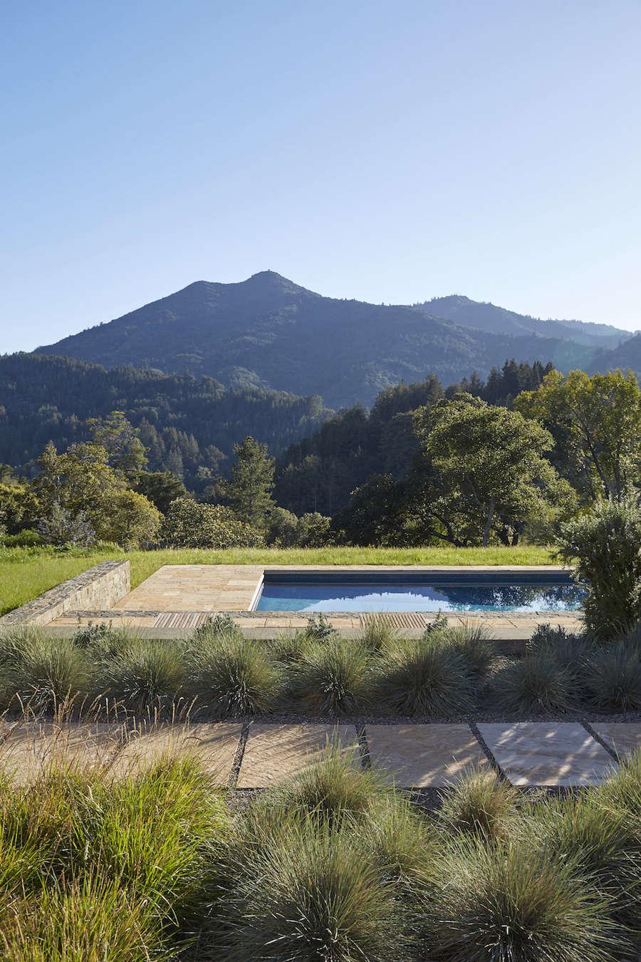 Marin-Hills-Pool-Scott-Lewis-Gardenista-3