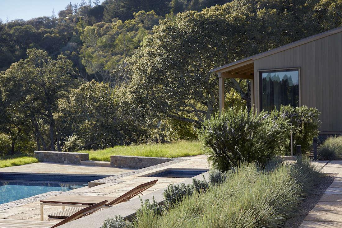Marin-Hills-Pool-Scott-Lewis-Gardenista-5