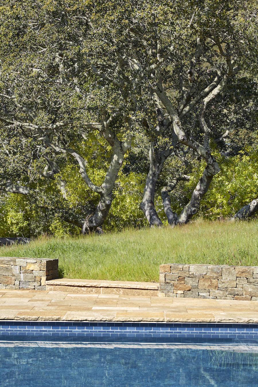 Marin-Hills-Pool-Scott-Lewis-Gardenista-6