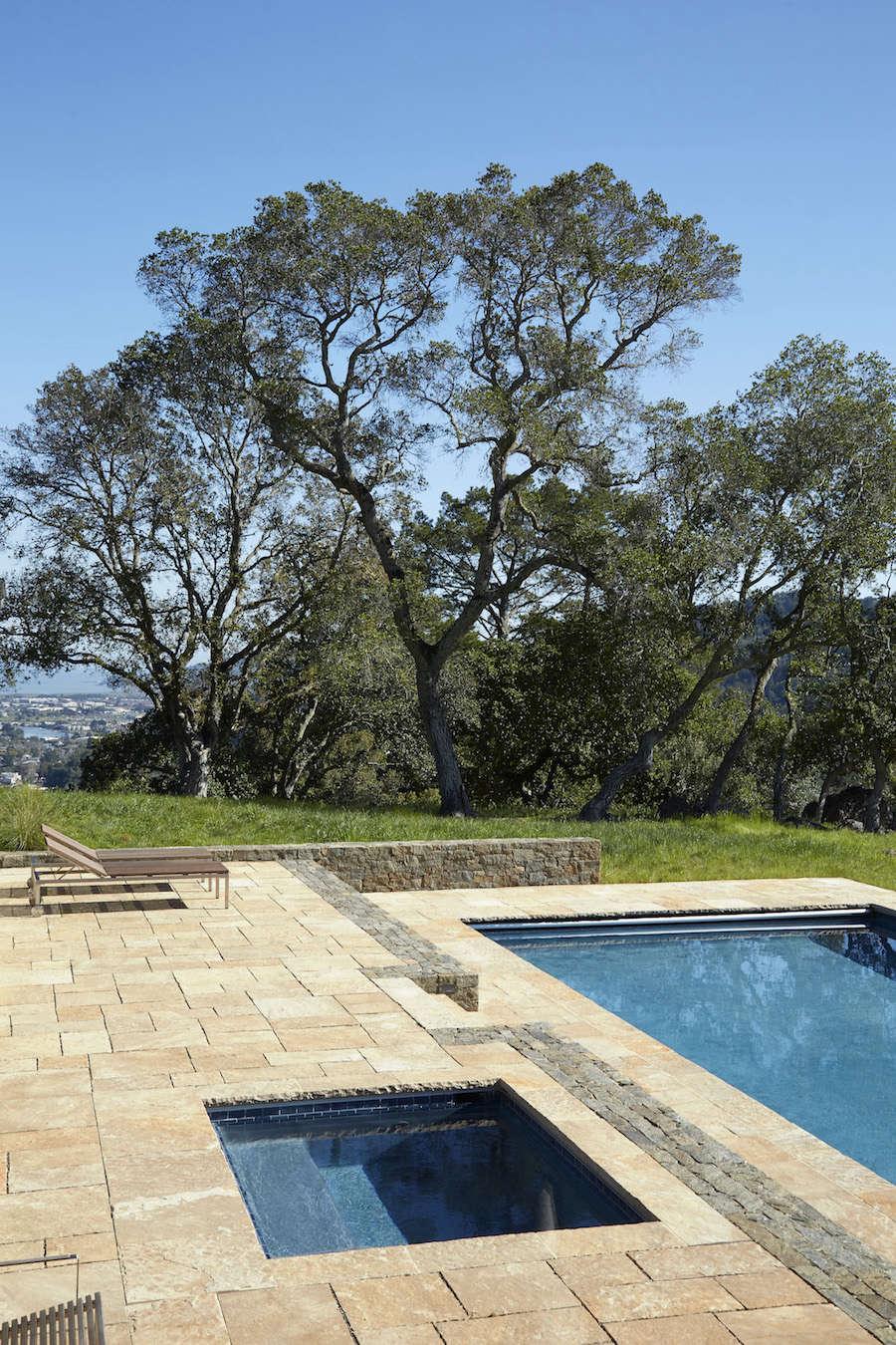 Marin-Hills-Pool-Scott-Lewis-Gardenista-8