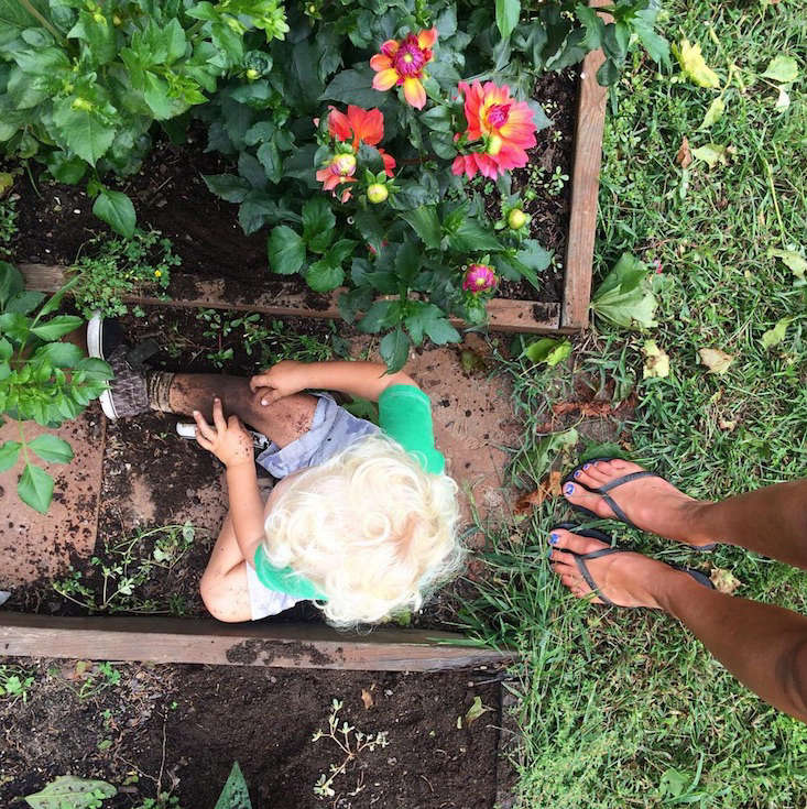 Sarah Waldmen_instagram_Gardenista