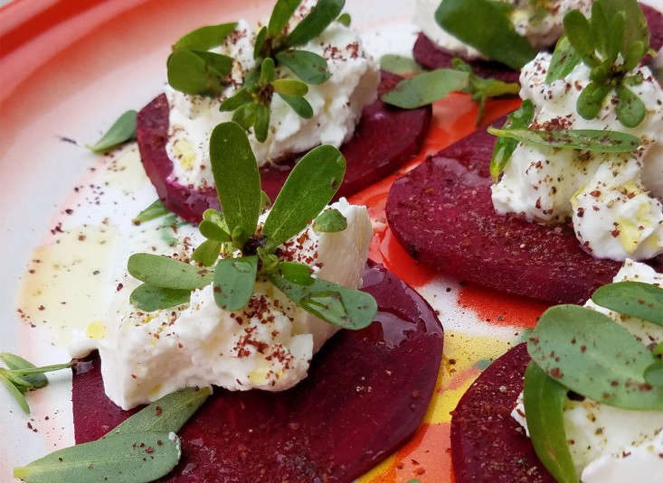 beet_purslane_snacks_marieviljoen_gardenista