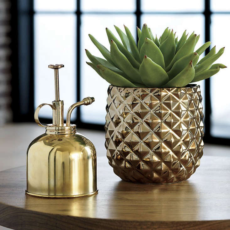 brass-planter-pot-pineapple-cb2