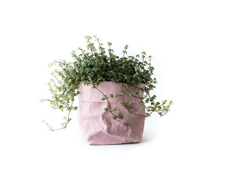 crop-uashmama-washable-paper-bags-planter-gardenista