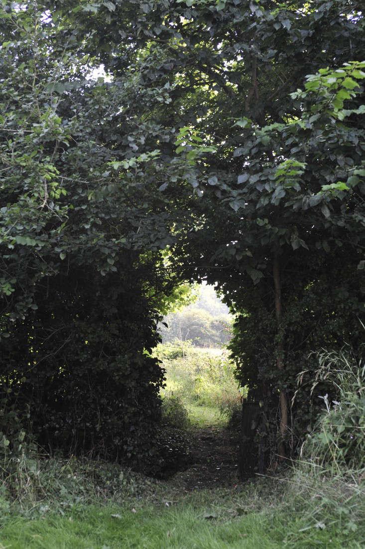 crossways_garden_suffolk_gardenista_6b_KF14429