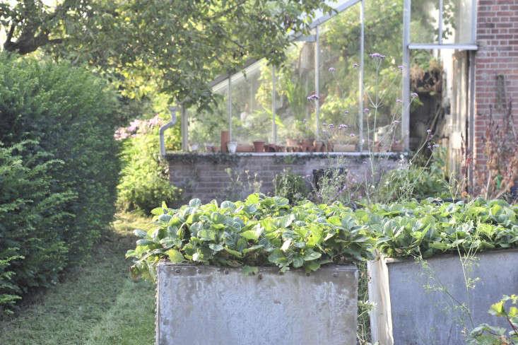 crossways_garden_suffolk_gardenista_9_KF14531