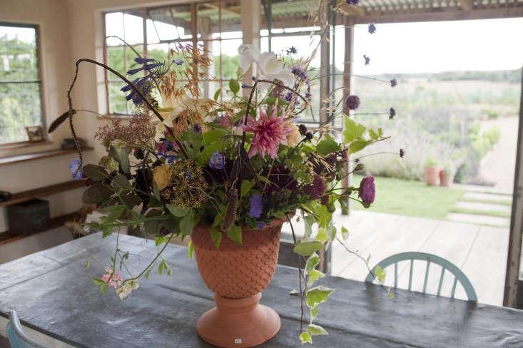 darsham_nurseries_kevin_foord_gardenista_KF11429