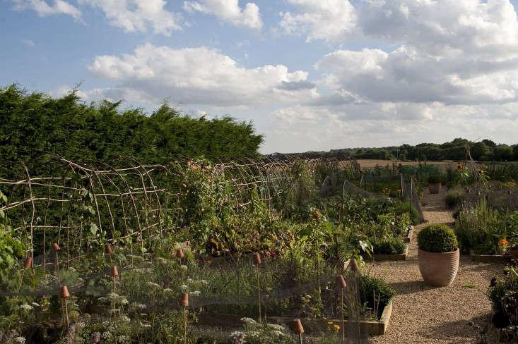 darsham_nurseries_kevin_foord_gardenista_KF11450