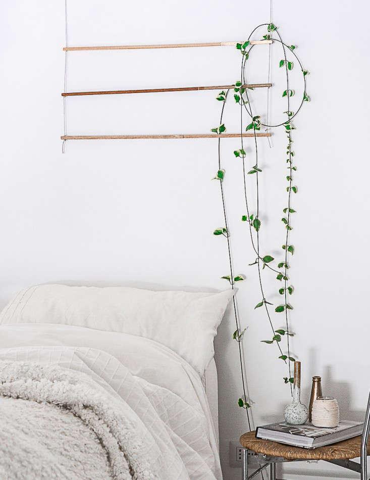 indoor-vines-trellis-Agata-Dimmich-Gardenista-6