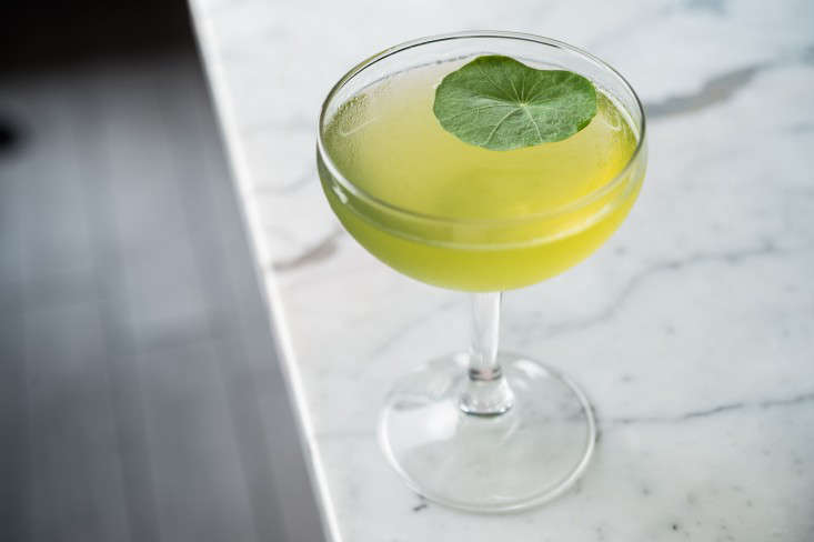 Nasturtium Cocktail from Gardenista