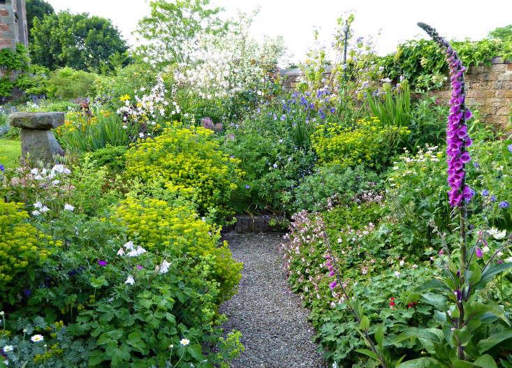 tattenhall-gravel-path-digitalis-foxglove-border-gardenista