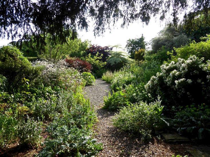 tattenhall-gravel-path-yellow-flower-border-gardenista