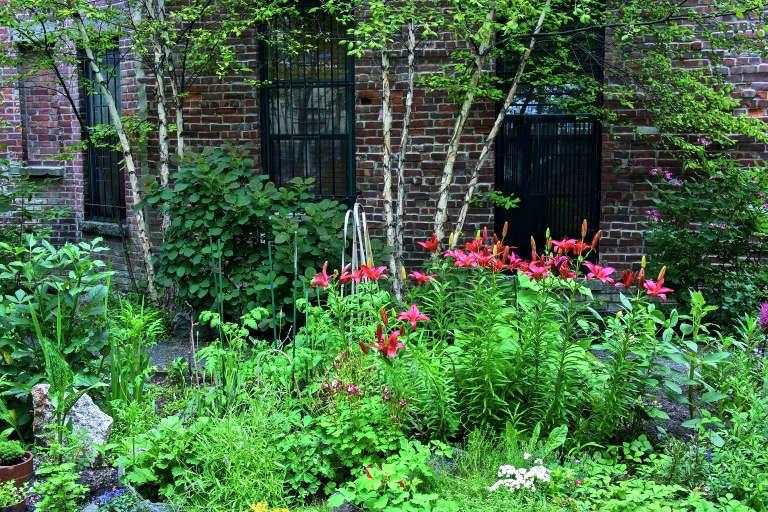 tiger-lilies-sidewalk-gardens-new-york-gardenista