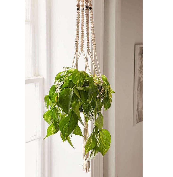 urban-outfitters-macrame-plant-hanger-gardenista