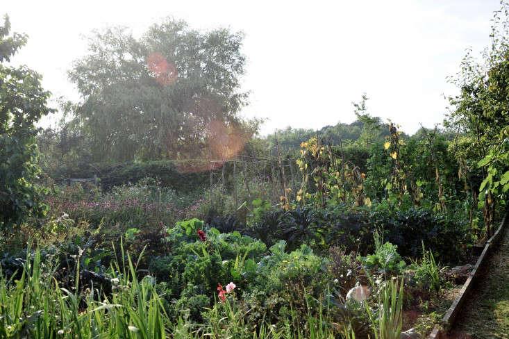vegetable-garden-crossways-gardenista
